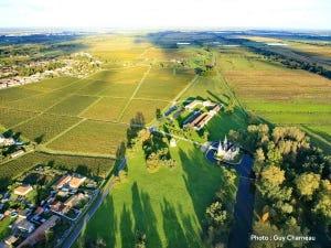 Médoc vineyard