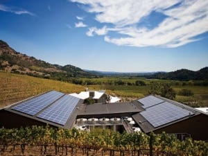 california wines, Sustainable Winegrowing