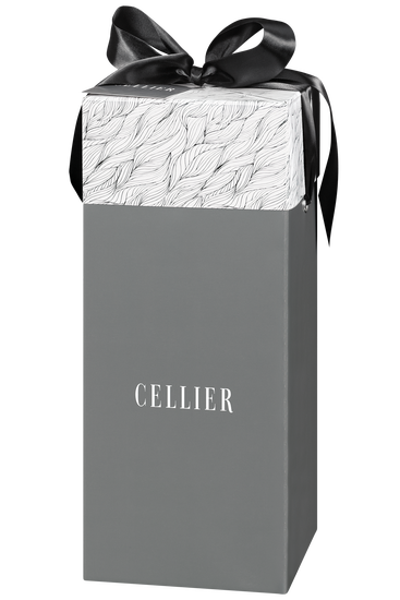 Cellier gift box for two bottles - grey