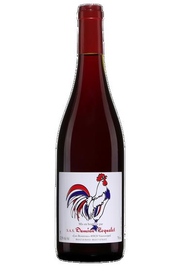 Damien Coquelet Gamay Vin de France Nouveau