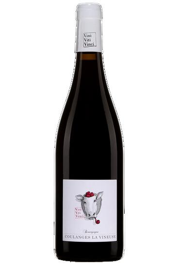 Vini Viti Vinci Chanvan Bourgogne Coulanges La Vineuse