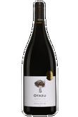 Otazu Premium Cuvée Navarra Image