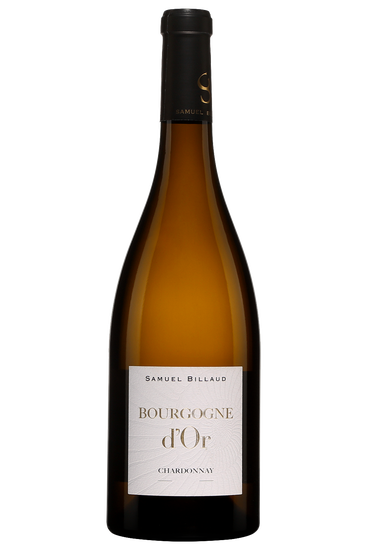 Samuel Billaud Bourgogne D'Or