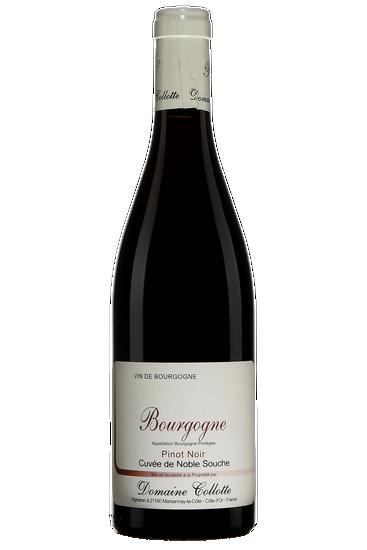 Domaine Collotte Bourgogne Cuvée de Noble Souche