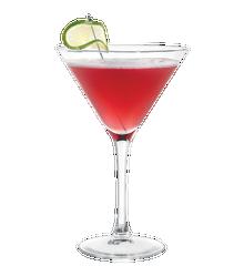 Cardinal Martini Image