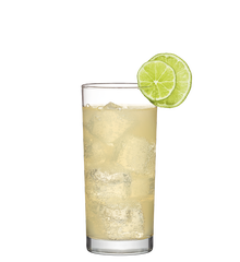 Mexican Mule Image