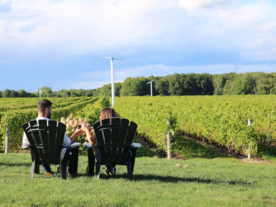 Explore Quebec, from vineyard to vineyard