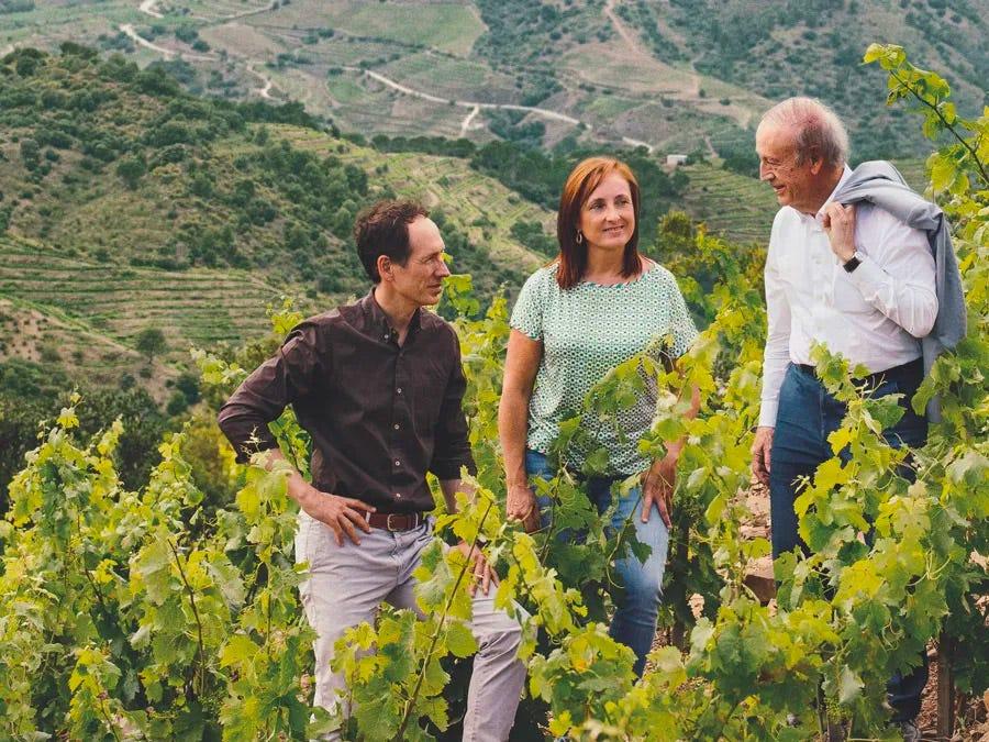 Torres family in their vineyard.