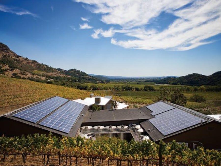 vins californien développement durable
