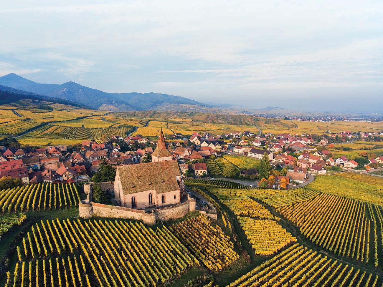 Vue aérienne des plaines et vignobles en Alsace