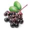 Flavour : Elderberry